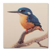 Thirstystone - Azure Kingfisher Coaster