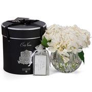 Cote Noire - White Hydrangeas Clear Vase w/ Spray Set 3pce