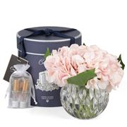 Cote Noire - Hydrangeas Blush Crystal Round Vase w/Spray
