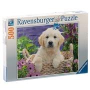 Ravensburger - Sweet Golden Retriever Puzzle 500pce