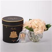 Cote Noire - Champagne Hydrangeas Round Vase w/Fragrance