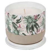 Robert Gordon - Louise Jones Stellar Blush Candle Tea Rose