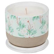 Robert Gordon - Louise Jones Flannel Flower Candle S/Pear