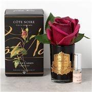Cote Noire - Rose Bud Carmine Red Black Glass w/Gold Crest