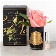 Cote Noire - Rose Bud White Peach Black Glass w/Gold Crest