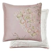 Private Collection - Mizumi Blush European Pillowcase