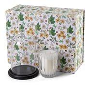 Peppermint Grove - Lemongrass & Lime Candle Cloche Gift Set