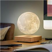 Gingko - Smart Moon Lamp Natural White Ash
