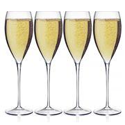 Luigi Bormioli - Magnifico Champagne Flute Set 4pce