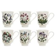 Portmeirion - Botanic Garden Bell-Shaped Beaker Set 6pce
