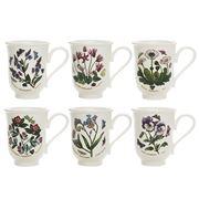 Portmeirion - Botanic Garden Bell-Shaped Beaker Set 6pce