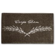Doormat Designs - Carpe Diem Doormat