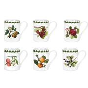 Portmeirion - Pomona Coffee Mug 280ml Set 6pce