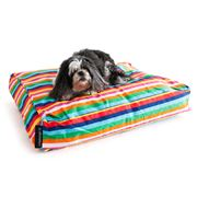 Crashmat - Rainbow Stripe Woof Pet Bed