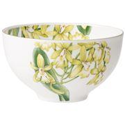 V&B - Amazonia Bowl 14cm