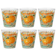 Cerve - Orange Juice DOF Tumbler Set 6pce