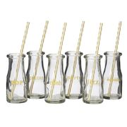 Anna Gare - Cocktail Hour Bottle with Straws Set 6pce