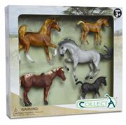 CollectA - Horse Life Set 5pce