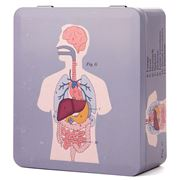 Life Of Jay - Anatomical Organs Tea Caddy