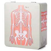 Life Of Jay - Anatomical Skeleton Tea Caddy