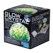Kidz Labs - Glow Crystal Growing Kit