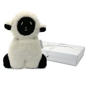 Britt - Lambsy Flat Lamb