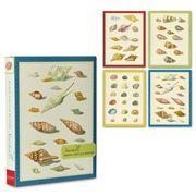 Galison - Portfolio Notecards Seashells