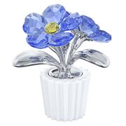 Swarovski - Forget-Me-Not