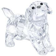Swarovski - Labrador Puppy Standing