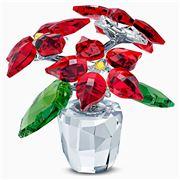 Swarovski - Joyful Poinsettia
