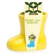 Rainy Day Garden - Mini Garden Kit with Chamomile Seeds