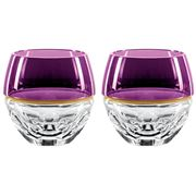 Waterford - Elysian Amethyst Double Old Fashioned Set 2pce