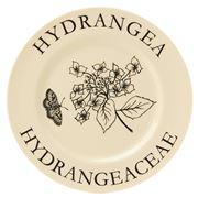 Big Tomato Company - Botanicals Hydrangea Plate