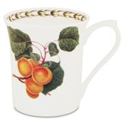 Queens - William Hooker's Fruit Mug Apricot