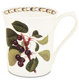 Queens - William Hooker's Fruit Mug Cherry
