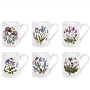 Portmeirion - Botanic Garden Breakfast Mug Set 6pce