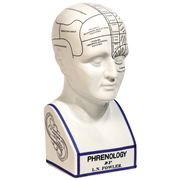 Authentic Models - Phrenology Model
